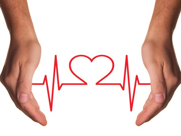 В Новосибирске начнут производить биопротезы клапанов сердца и сосудов