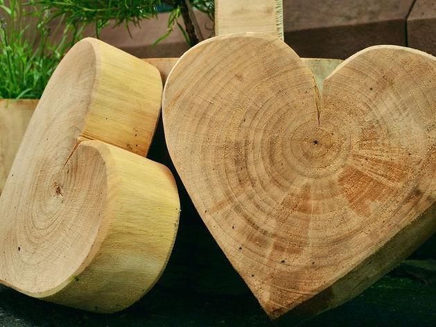 Новосибирск получит новые заводы по глубокой переработке леса для Китая