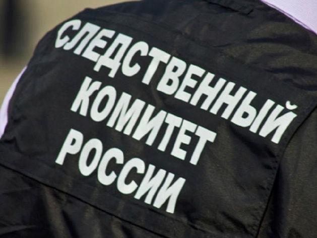 Новосибирские следователи проверяют обстоятельства обрушения стены в школе