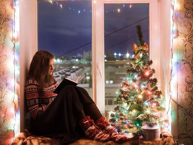 Сколько в Новосибирске стоит аренда коттеджей на Новый год?