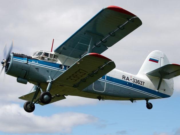 «Ушли в партизаны». Новосибирские авиаторы прочат отрасли катастрофу