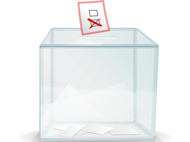 В новосибирском избиркоме рассказали о нарушениях во время выборов