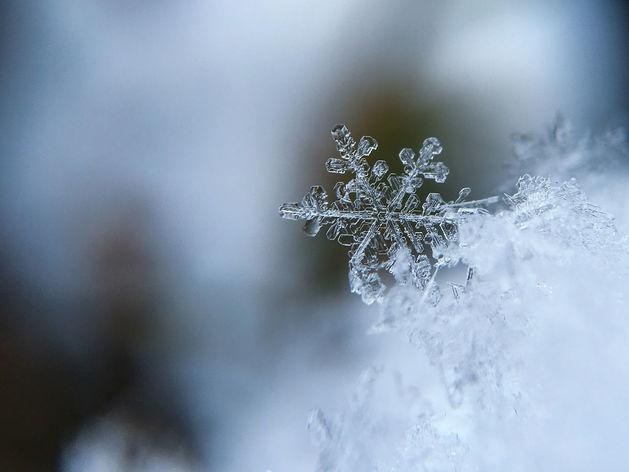 Снег и мороз: на выходных в Новосибирск придет зима