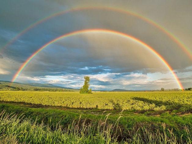 Дождь и солнце ожидают новосибирцев на выходных