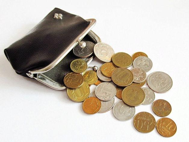 Почти у 50% жителей Новосибирска уменьшилась заработная плата