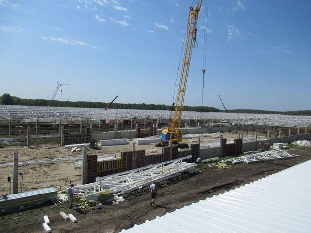 «Кудряшовское» завершает строительство третьей очереди свинокомплекса