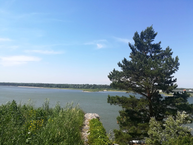 Дом на берегу Оби выставлен на продажу за 13,5 млн руб.