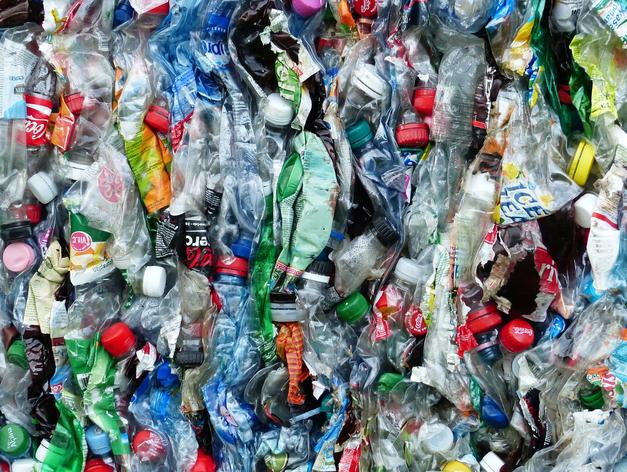 53 миллиона за вред экологии взыскали со «Спецавтохозяйства»