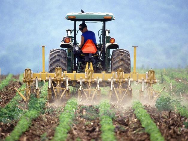 Вдвое вырос конкурс на место для поступления в «Школу фермера»