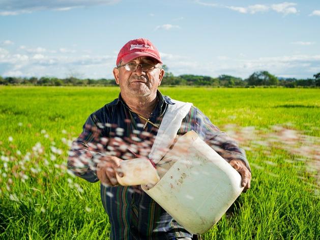 Лучшие выпускники «Школы фермера» получили гранты