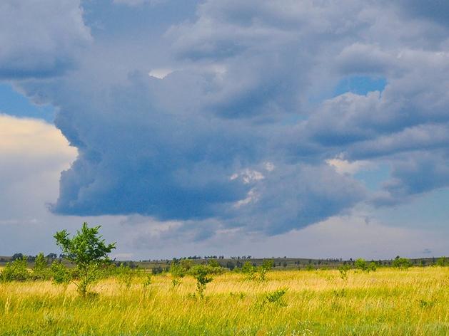 Пасмурной и прохладной будет погода на выходных в Новосибирске