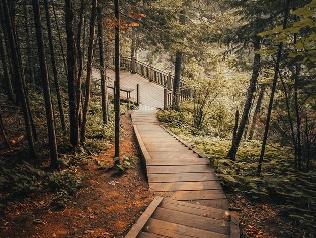Полмиллиарда вложат в создание эко-парка под Новосибирском
